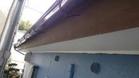 日立市 K様邸 雨樋塗装(施工前・下塗り・上塗り)