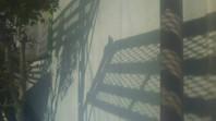 鹿嶋市 I様邸 外壁塗装(下塗り・中塗り)