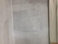 ひたちなか市 J様邸 外壁塗装(下塗り)
